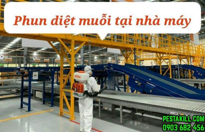 dịch vụ diệt muỗi tại nhà máy