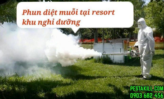 dịch vụ diệt muỗi tại resort khách sạn